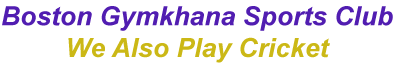Boston Gymkhana – We also play cricket